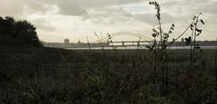 Bridge 1 (Battlewolfe) Tags: park bridge nature canon island eos l 5d runcorn widnes 2470mm wigg