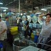 Busy - Chanh Hung Night Fish Market. Ho Chi Min City/Saigon