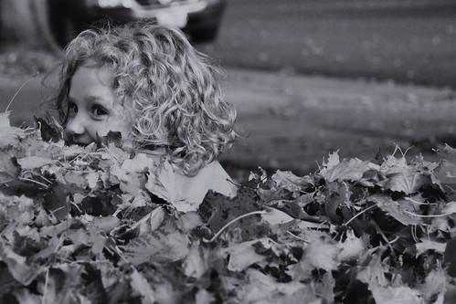 moosh in leaves.