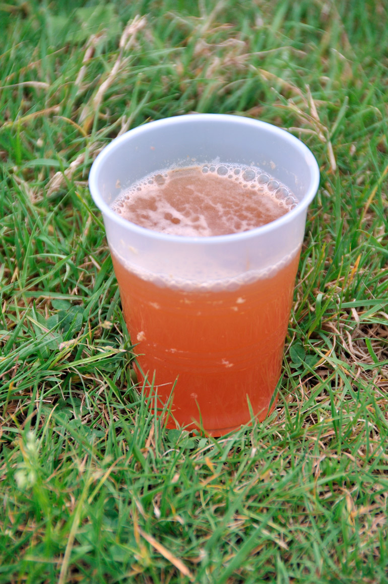 cider_cup_0095