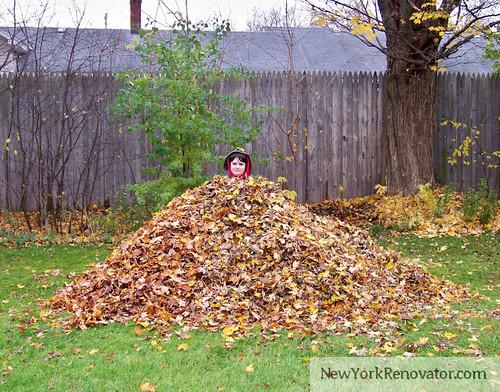 Leaf Pyramid