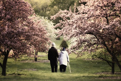 Time (karenmeyere) Tags: time blooming appletrees motherson tendermoments karenmeyere karenhunnicuttphotographycom