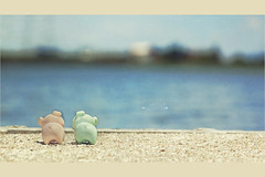 146/365 : looking out across the river (GreenTea) Tags: pink blue water river pig dock bokeh eraser pigs photoaday pinkpig pictureaday erasers project365 bluepig iwako project365146 oneobject365daysproject 365toyproject iwakoeraser pigeraser pigerasers project36505262011