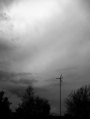 Ominous (Katy Levinson) Tags: trees sky blackandwhite bw cloud black tree college nature skyline clouds contrast rural dark vermont roadtrip