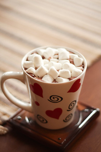 Do You Like Hot Cocoa With or Without Marshmallows?