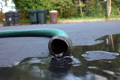 (danielle_joy) Tags: abstract green water puddle photo newjersey movement driveway flowing gardenhose oradell bergencounty