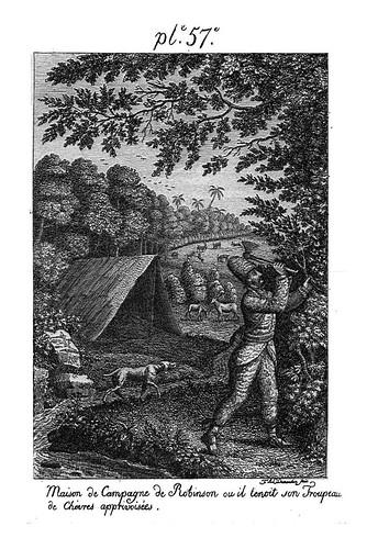 006- Caseta que preparo Robinson junto al rebaño de cabras