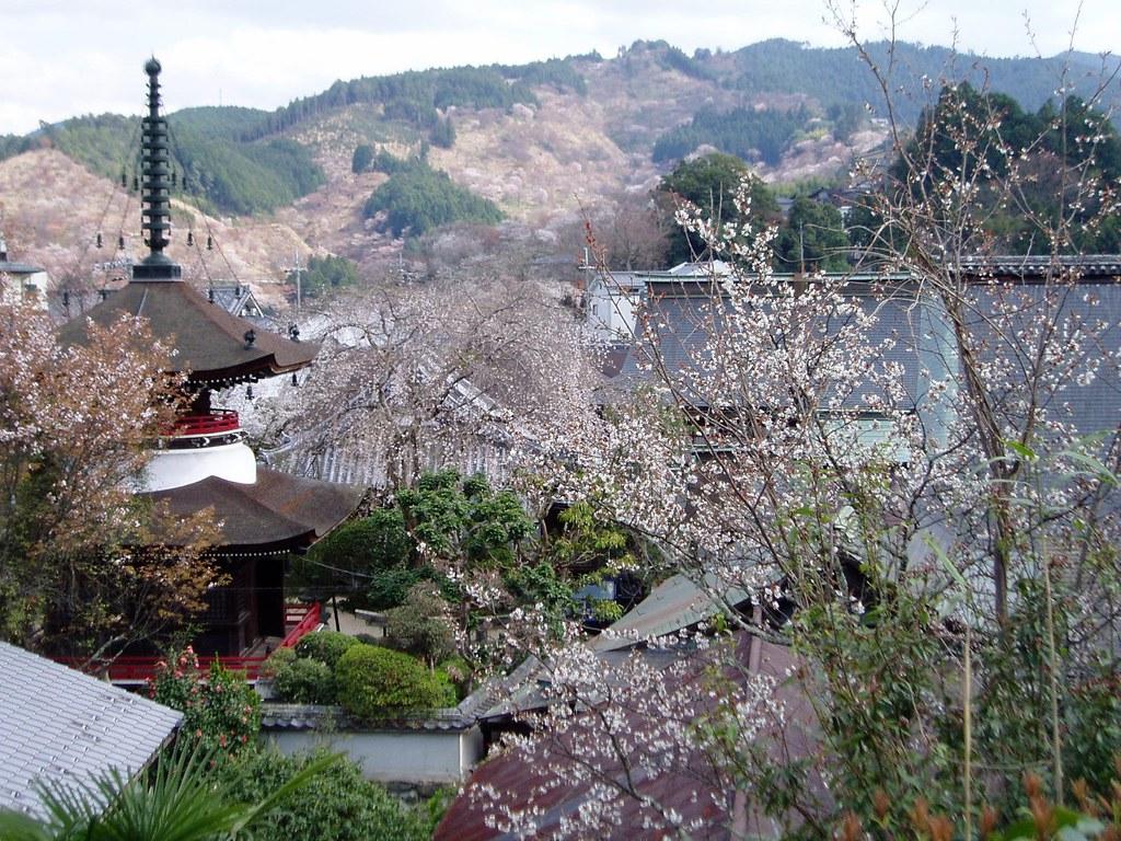 東南院から見る吉野の山