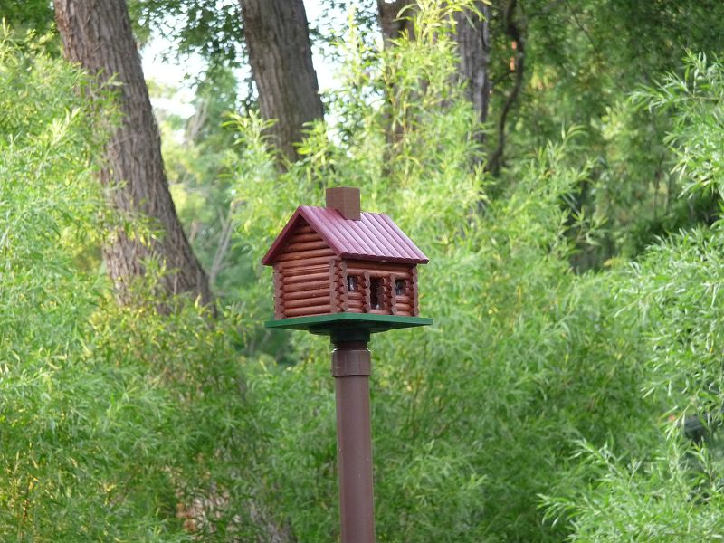 Log Cabin Bird House - mounted