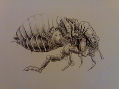 steampunk ungeziefer (Tolagunestro) Tags: insect flea steampunk ungeziefer