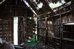 The remains of a traditional Orang Asli house, Kampung Gumum, Tasik Chini, Malaysia (sensaos) Tags: people lake asia south east malaysia tribe kampung orang melayu maleisie zuid azie oost chini azi tasik asli maleisi jakun gumum