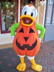 Pumpkin Donald Duck