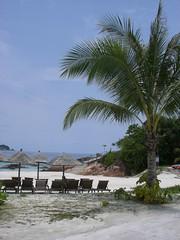 CIMG6753 (cscjanni) Tags: malaysia redang pulauredang