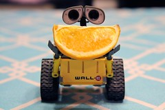Orange Slice (twmjedi) Tags: orange canon toy rebel disney pixar 365 efs xsi 1755 walle 1755mm project365 efs1755 canonefs1755mmf28isusm 450d canonefs1755mmf28 oneobject365daysproject 365toyproject walle365