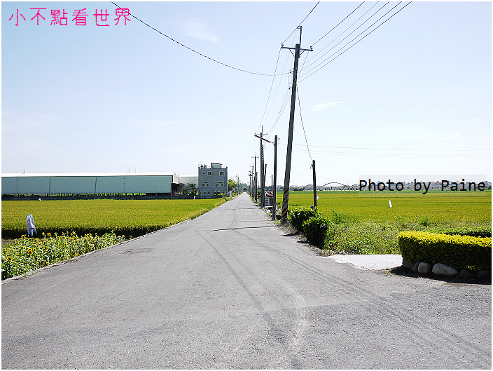 新港板頭村 (34).jpg