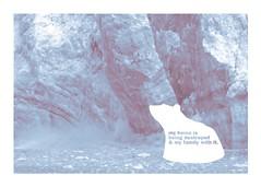 WWF postcard / polar bear (HUNDREDEYES) Tags: white green ice typography propaganda postcard border detroit polarbear help letter killed melt form habitat wwf ccs endangeredspecies worldwildlifefund dustinmaciag
