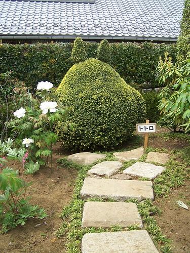Casa de Totoro por Lindz