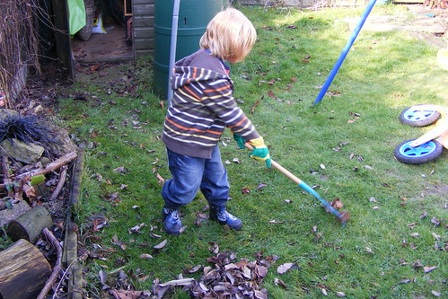 DS1 raking leaves