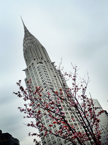 Blossoms and Chrysler Building 1