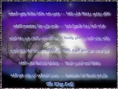 تعلق روحي روحها (Afid wa Istafid) Tags: روحي روحها تعلق