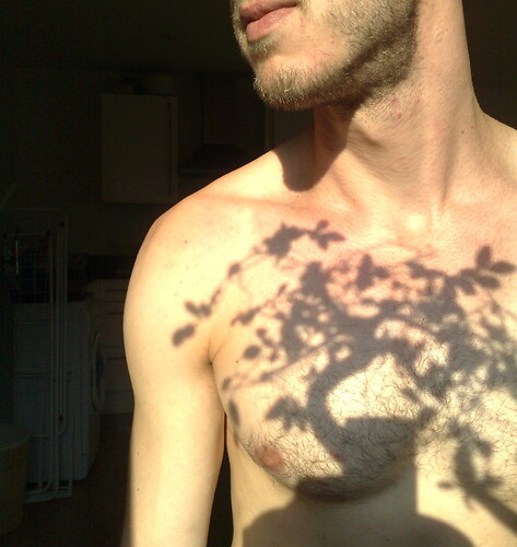 Bonsai Shadow Tattoo