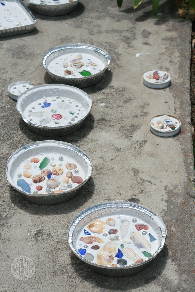 pretty shell pies drying in the sun