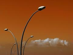 Sprouts (Gaby.Bernstein) Tags: sky cloud white grey telaviv skies gaby lamppost orage bernstein lampposts bernsteingaby gabybernstein