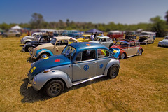 All Bugged Out 1760 (casch52) Tags: show california flower classic love car sign vw canon bug fun photo 60s funny peace power sandiego antique beetle hippy shift photograph oceanside vista slug 1960s 1968 buggy tilt volkswagon lovebug 1960 bugged vdub slugbug 50d platinumheartaward familygetty