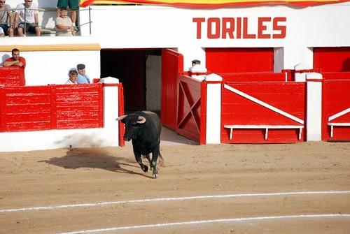 Corrida Mixta, Feria de Melilla 2009 043