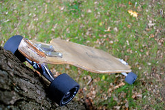 my dervish (Go Outside Today) Tags: tree longboard dervish hawgs