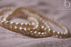 7/365 ,,, (H) Tags: bokeh h2o pearls pillow p pearl              masha3el