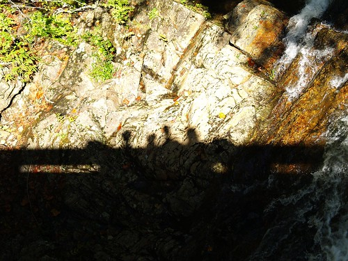 Shadow Shot Bridge