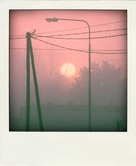 Amanecer Ocaso (nadiA*) Tags: pink sunset shadow red sky orange sun tree luz sol fog ruta mi polaroid casa soft arboles magic amanecer cables momento fin neblina ocaso niebla  magia estructura publico equilibrio comienzo recortado tensin alumbrado poladroid