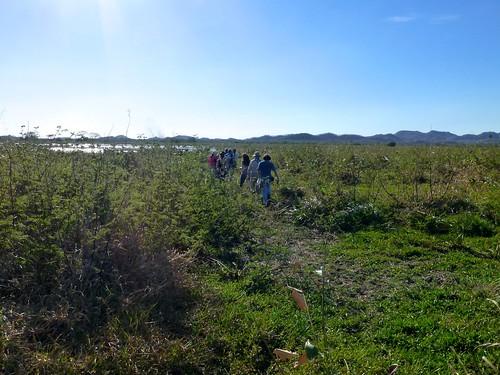 Palo Verde 2014