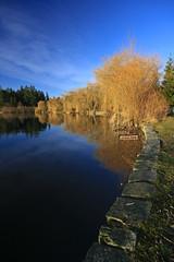 Lost Lagoon 3 (~ Kevin McGrew ~) Tags: canada vancouver bc stanleypark lostlagoon
