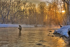 Golden Morning (Matt Champlin) Tags: morning winter mist fish snow cold ice canon fishing steel catch flyfishing salmonriver trout hdr steelhead brrr pulaski altmar northernnewyork steelies mywinners anawesomeshot aplusphoto eos40d