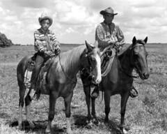 Anglų lietuvių žodynas. Žodis charley horse reiškia charley arklys lietuviškai.