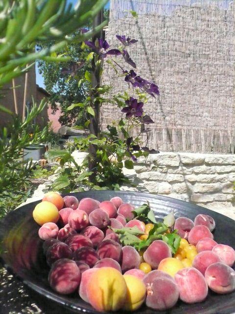 chauvets peaches2