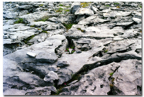 Ireland_The Burren