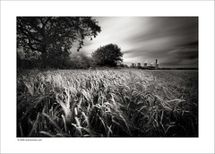 Fiddlers Ferry Power Station (Ian Bramham) Tags: field barley station ferry landscape photography photo movement nikon long exposure power fineart coal fiddlers fired d40 ianbramham