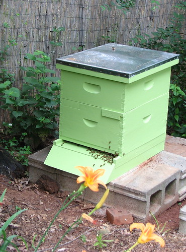 Our beehive is painted green to help it blend in with the garden.