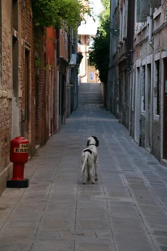 2009-07-29 Venice 002