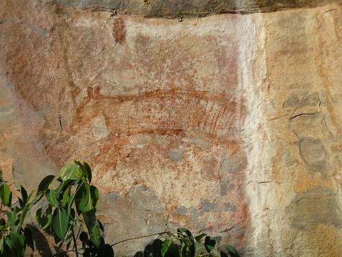 Australie 2009 Kakadu #25