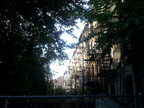 The light right now, Park Slope, BK