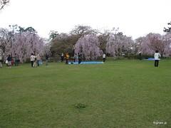 Hirosaki Castle garden (eyeonjapan.com) Tags: castle garden hirosaki