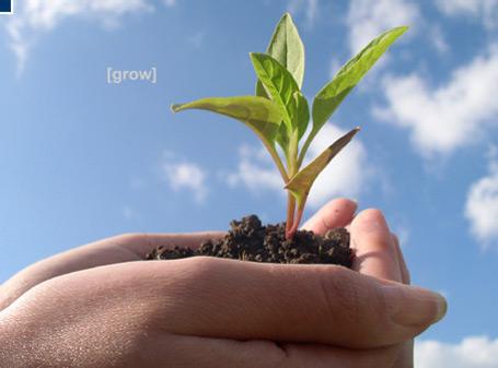 Nhân tài và môi trường tạo nhân tài
