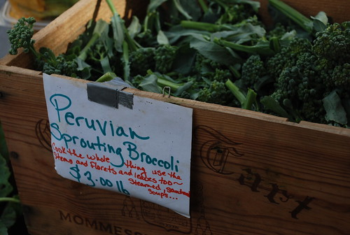 Peruvian Sprouting Broccoli from Evolutionary Organics