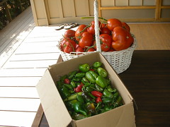 Garden Peppers & Tomatoes