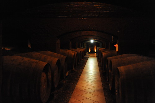 Wine Cellar in Chateau Kamiya