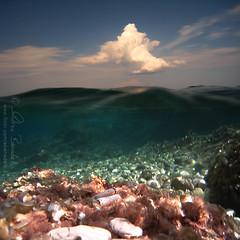 swimming on the moon (Ąиđч) Tags: sea summer sky andy rocks nuvole mare waves underwater estate andrea andrew greece grecia cielo sassi kefalonia coulds onde cephalonia fuori mezzo benedetti sottacqua halfin halfout halfunderwater vertorama ąиđч mezzodentro